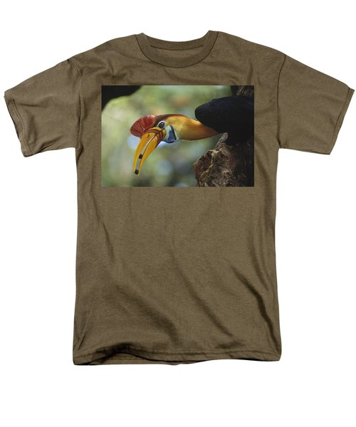 Sulawesi Red-knobbed Hornbill Male Men's T-Shirt  (Regular Fit) by Tui De Roy