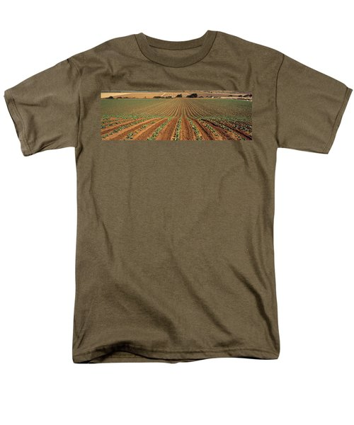 Agriculture - Sloping Field Of Early Men's T-Shirt  (Regular Fit) by Timothy Hearsum