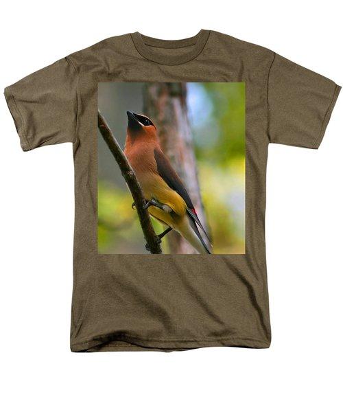 Cedar Wax Wing Men's T-Shirt  (Regular Fit) by Roger Becker
