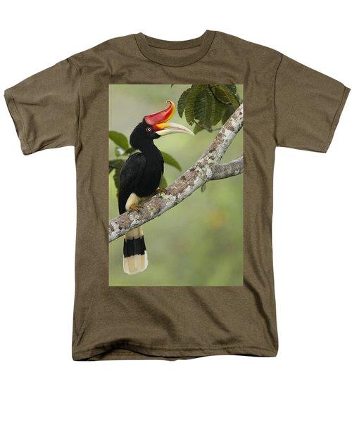 Rhinoceros Hornbill Female Sepilok Men's T-Shirt  (Regular Fit) by Sebastian Kennerknecht