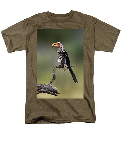 Southern Yellowbilled Hornbill Men's T-Shirt  (Regular Fit) by Johan Swanepoel