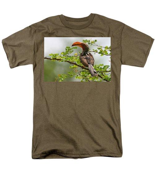Yellow-billed Hornbill Men's T-Shirt  (Regular Fit) by Bruce J Robinson