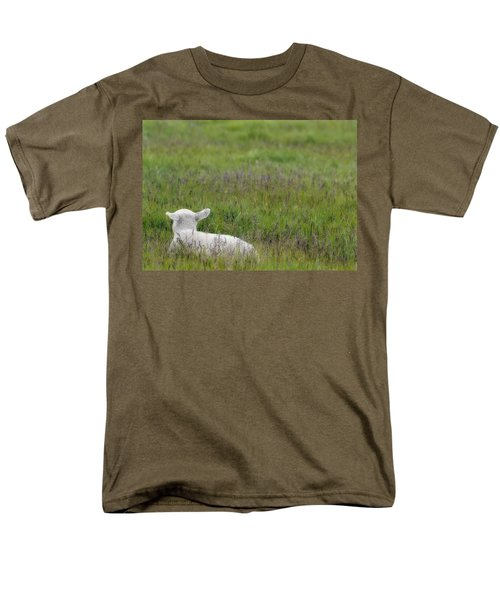 Lamb In Pasture, Alberta, Canada T-Shirt by Darwin Wiggett