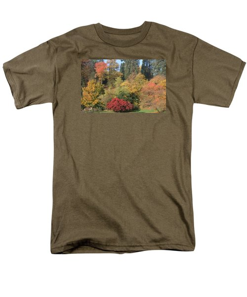 Men's T-Shirt  (Regular Fit) featuring the photograph Autumn In Baden Baden by Travel Pics