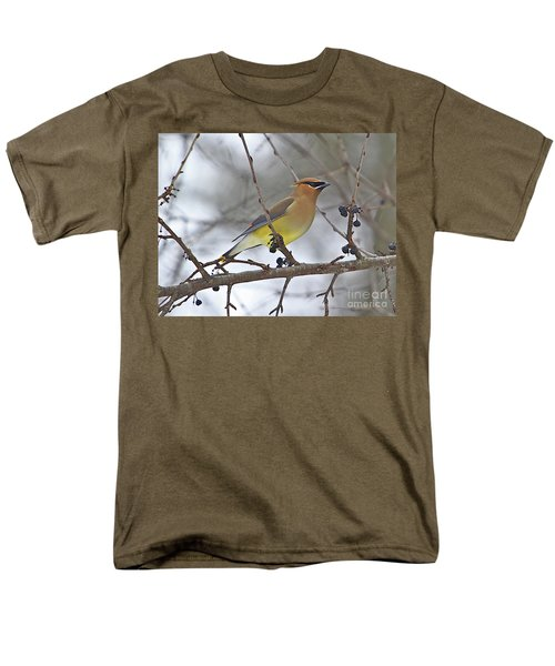 Cedar Wax Wing-2 Men's T-Shirt  (Regular Fit) by Robert Pearson
