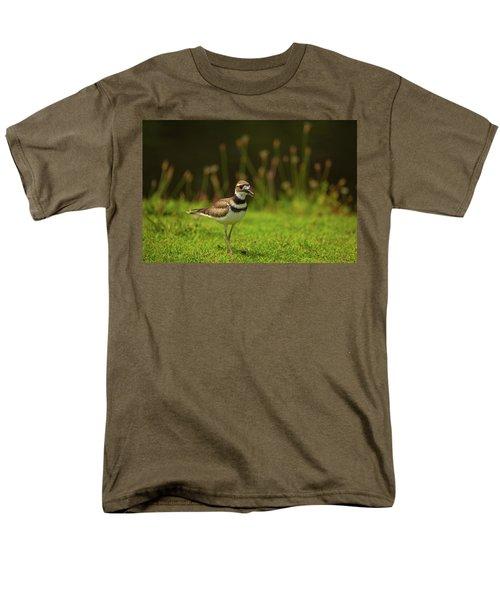 Killdeer Men's T-Shirt  (Regular Fit) by Karol Livote