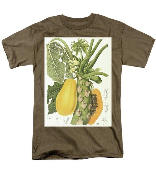 Papaya Men's T-Shirt  (Regular Fit) by Berthe Hoola van Nooten
