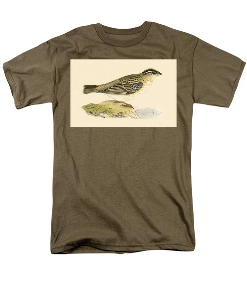 Rock Sparrow Men's T-Shirt  (Regular Fit) by English School