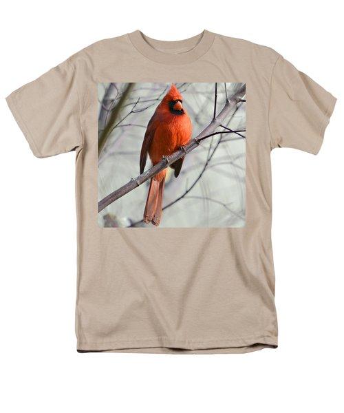 Cardinal in a Tree T-Shirt by Susan Leggett
