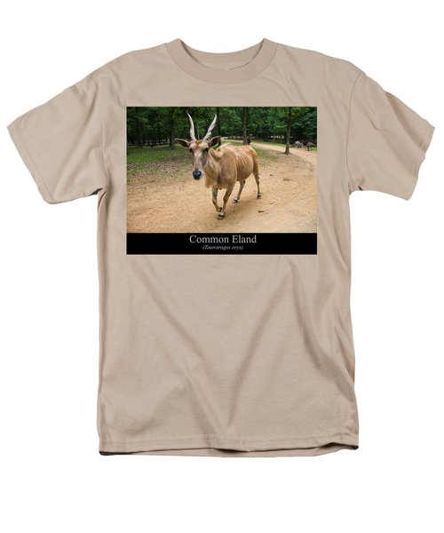 Common Eland T-Shirt by Chris Flees