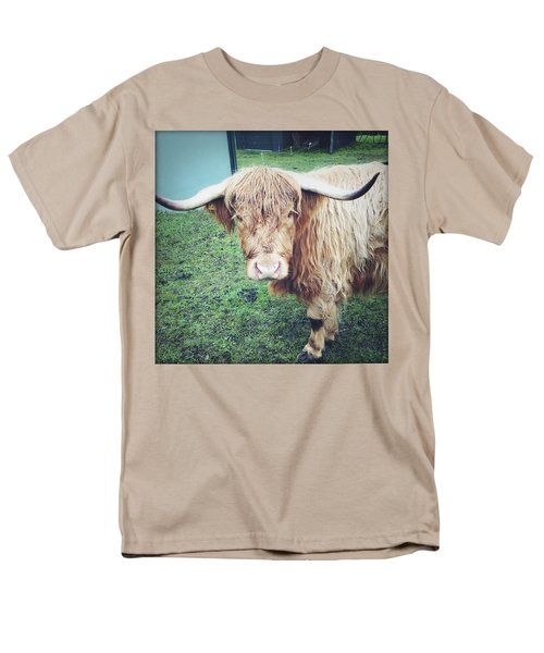 Highland cow T-Shirt by Les Cunliffe
