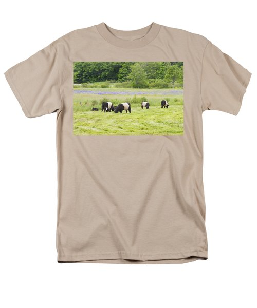 Belted Galloway Cows Pasture Rockport Maine Photograph T-Shirt by Keith Webber Jr