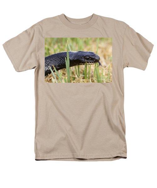Large Whipsnake Coluber jugularis T-Shirt by Alon Meir
