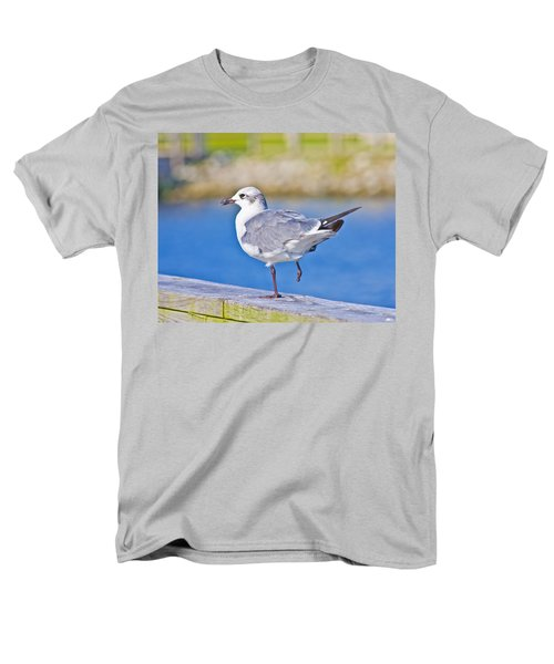 Topsail Seagull T-Shirt by Betsy C  Knapp