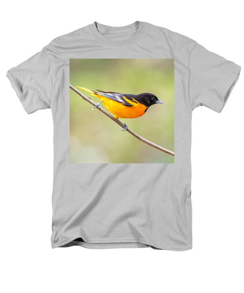 Baltimore Oriole Men's T-Shirt  (Regular Fit) by Paul Freidlund
