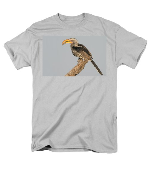 Southern Yellow-billed Hornbill Tockus Men's T-Shirt  (Regular Fit) by Panoramic Images