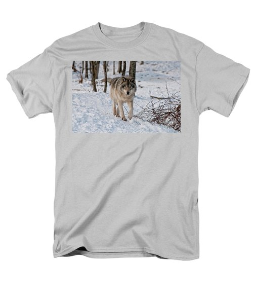 Timber Wolf In Snow T-Shirt by Michael Cummings