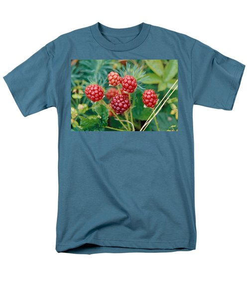 Highbush Blackberry Rubus Allegheniensis Grows Wild In Old Fields And At Roadsides Men's T-Shirt  (Regular Fit) by Anonymous