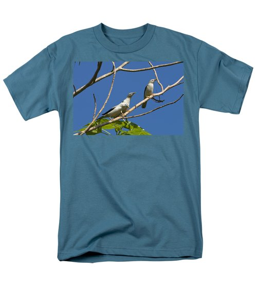 White-headed Starlings Havelock Isl Men's T-Shirt  (Regular Fit) by Konrad Wothe