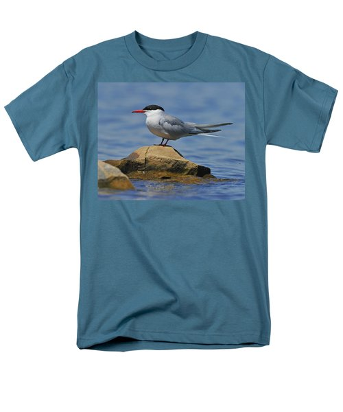 Adult Common Tern T-Shirt by Tony Beck
