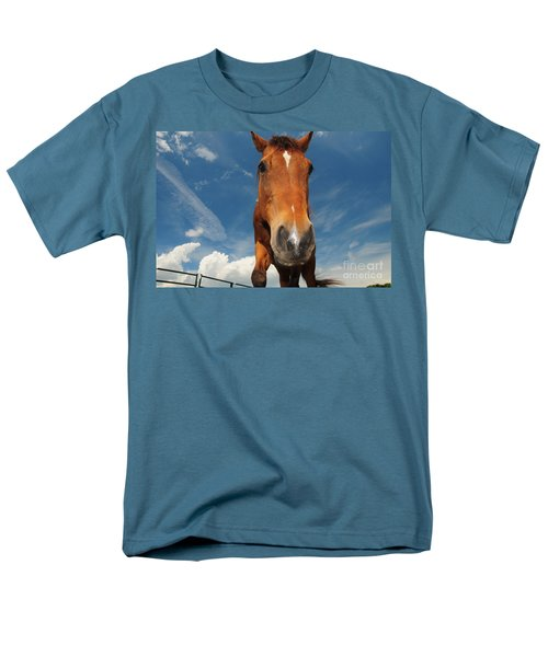 The Curious Horse T-Shirt by Paul Ward