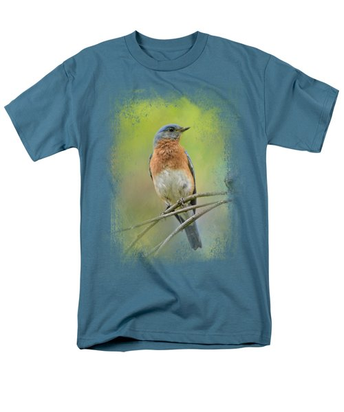 Bluebird On A Spring Day Men's T-Shirt  (Regular Fit) by Jai Johnson