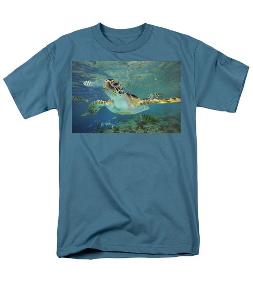 Green Sea Turtle Chelonia Mydas T-Shirt by Tim Fitzharris