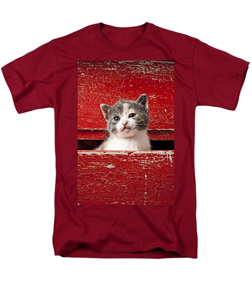 Kitten in red drawer T-Shirt by Garry Gay