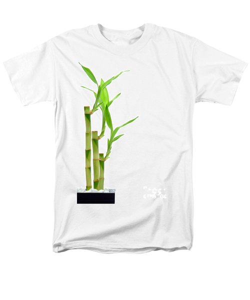 Bamboo Stems in Black Vase T-Shirt by Olivier Le Queinec
