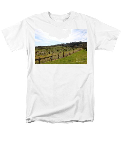 California Vineyards In Late Winter Just Before The Bloom 5D22114 T-Shirt by Wingsdomain Art and Photography