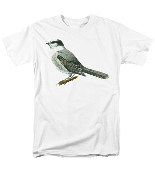 Canada Jay Men's T-Shirt  (Regular Fit) by Anonymous