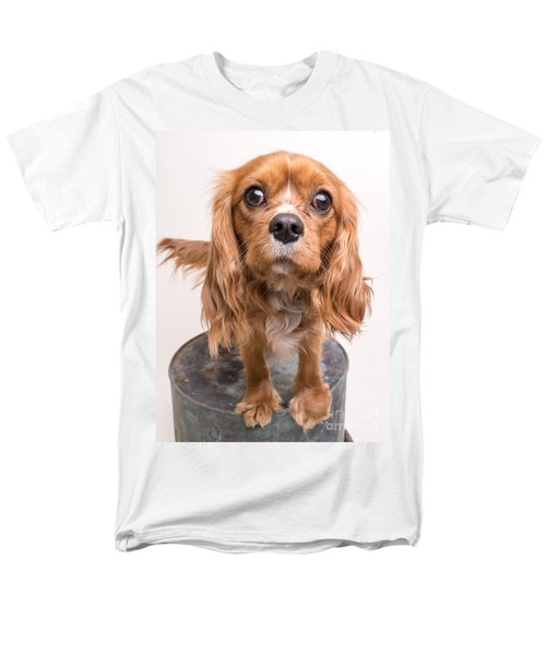 Cavalier King Charles Spaniel Puppy T-Shirt by Edward Fielding