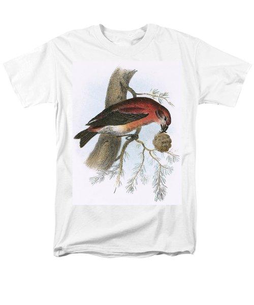 Crossbill Men's T-Shirt  (Regular Fit) by English School