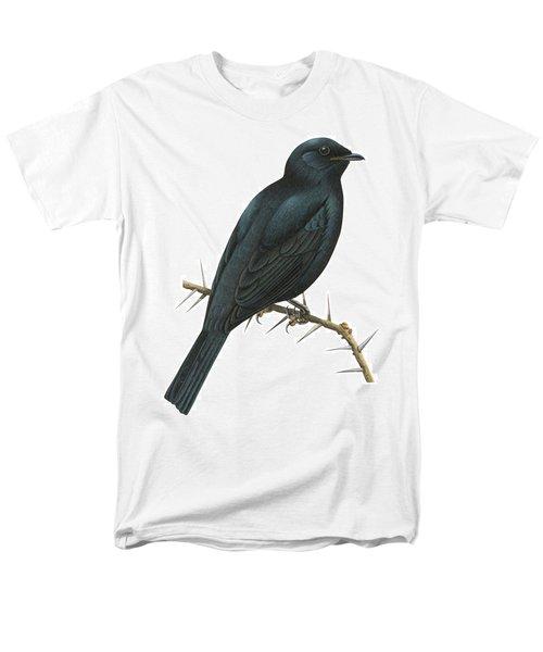 Cuckoo Shrike Men's T-Shirt  (Regular Fit) by Anonymous