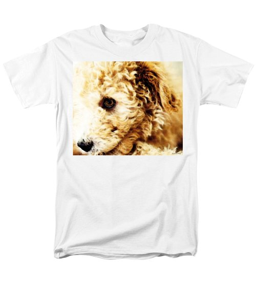 Labradoodle Dog Art - Doodle Bug T-Shirt by Sharon Cummings