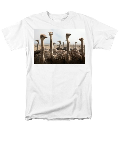 Ostrich Heads Men's T-Shirt  (Regular Fit) by Johan Swanepoel
