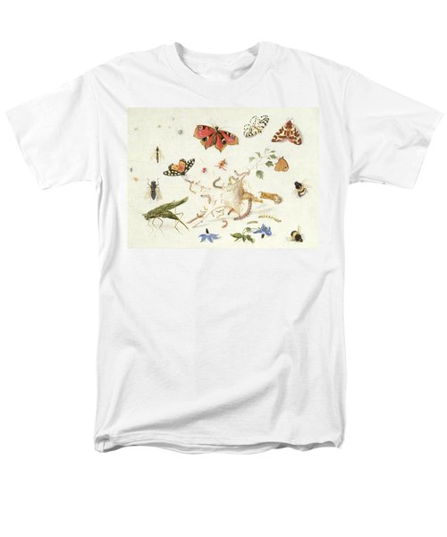 Study Of Insects And Flowers Men's T-Shirt  (Regular Fit) by Ferdinand van Kessel