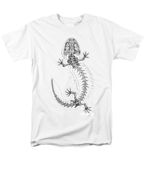 Cryptobranchus, Living Fossil Men's T-Shirt  (Regular Fit) by Science Source