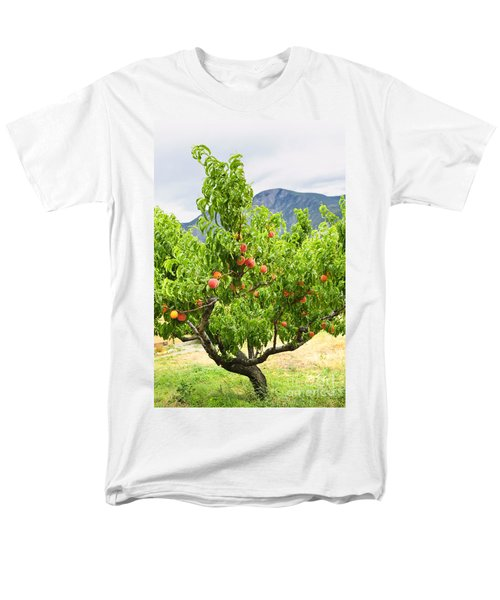 Peaches on tree T-Shirt by Elena Elisseeva
