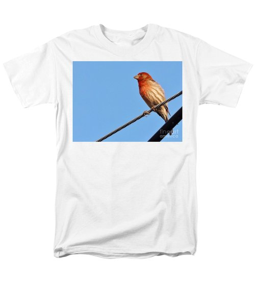 American Crossbill On Wire     Spring   Indiana   Men's T-Shirt  (Regular Fit) by Rory Cubel