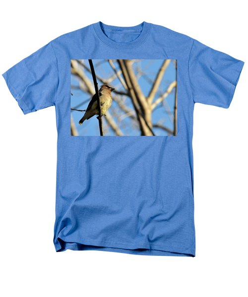 Cedar Wax Wing Men's T-Shirt  (Regular Fit) by David Arment