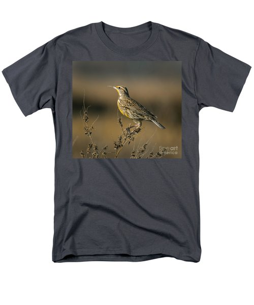 Meadowlark On Weed Men's T-Shirt  (Regular Fit) by Robert Frederick