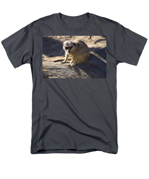 Meerkat Resting On A Rock Men's T-Shirt  (Regular Fit) by Chris Flees