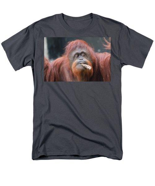 Orangutan Portrait Men's T-Shirt  (Regular Fit) by Dan Sproul