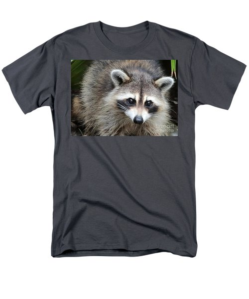 Raccoon Eyes Men's T-Shirt  (Regular Fit) by Carol Groenen