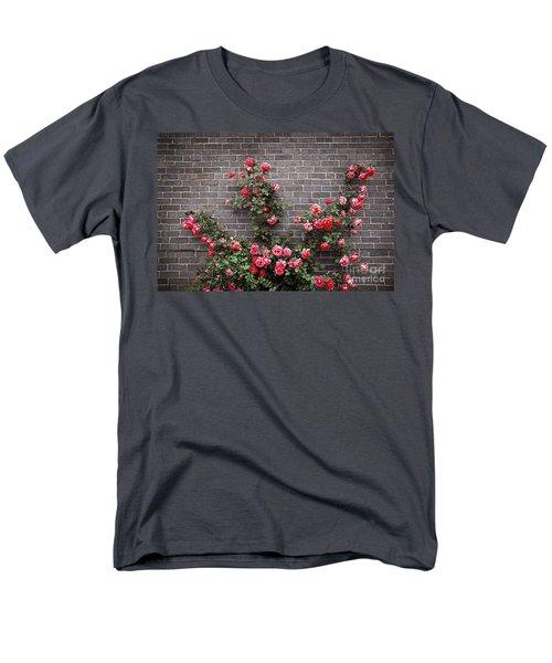 Roses on brick wall T-Shirt by Elena Elisseeva