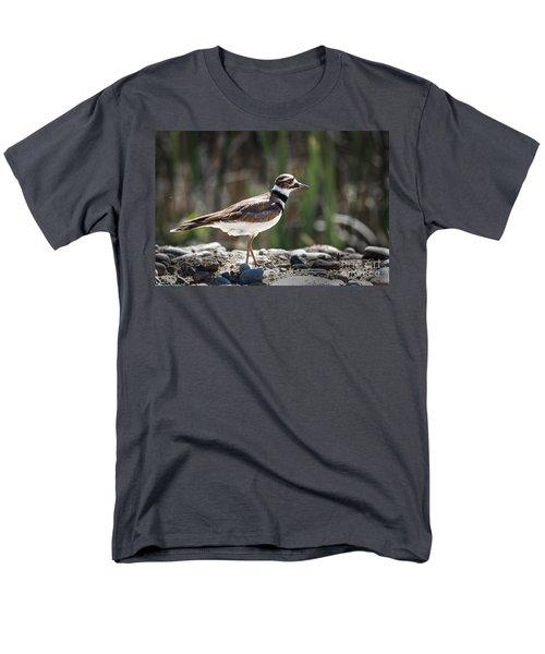 The Killdeer Men's T-Shirt  (Regular Fit) by Robert Bales