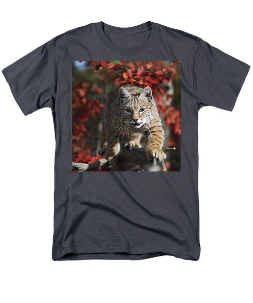 Bobcat Felis Rufus Walks Along Branch T-Shirt by David Ponton