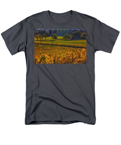 Autumn vineyards T-Shirt by Garry Gay
