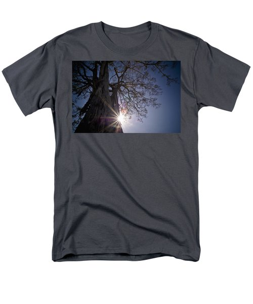 The Sunlight Shines Behind A Tree Trunk T-Shirt by David DuChemin